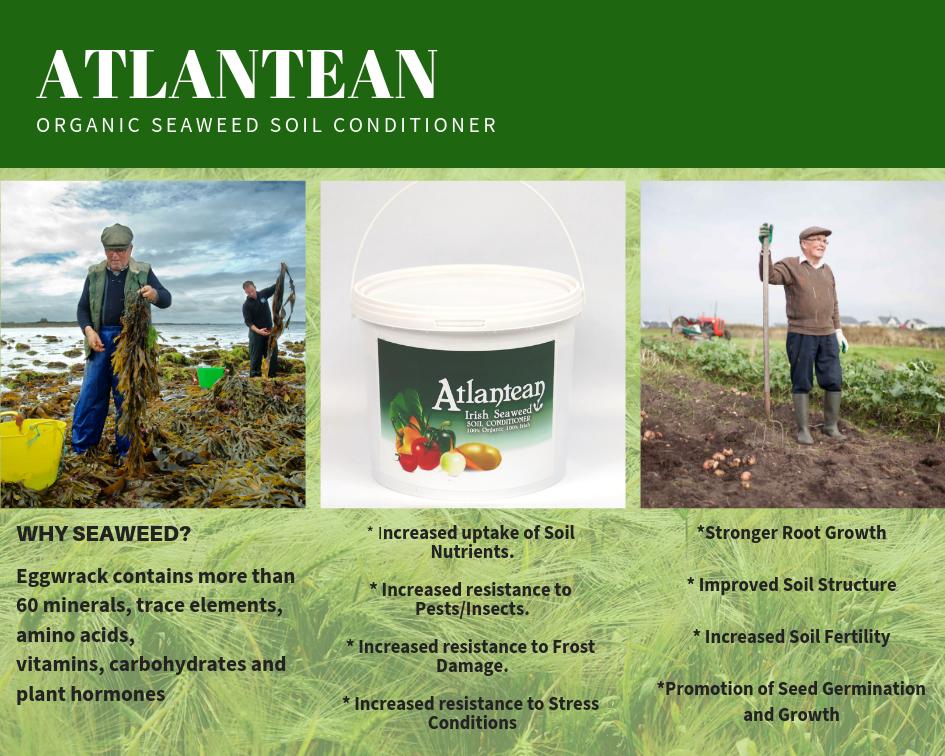 seaweed fertiliser soil conditioner