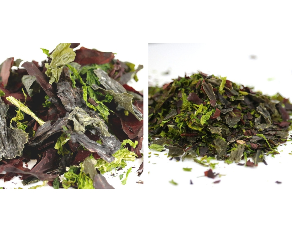 Catering range sizes of seaweed