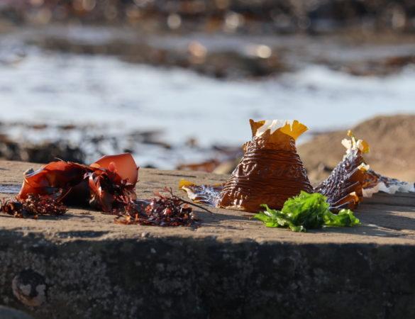Vitamins in Seaweeds