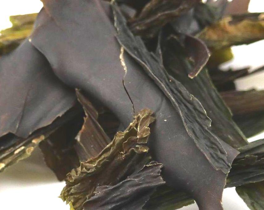 Kombu kelp